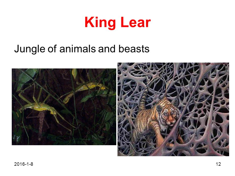 King Lear Jungle of animals and beasts 2017/4/26