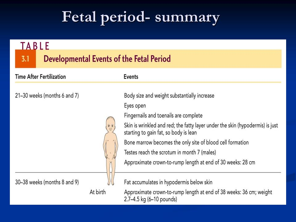 an overview of prenatal period Pregnancy and prenatal development chapter 4 prepared by –critical period –chlorpyrifos and diazinon cause stunting of prenatal growth • hazardous.
