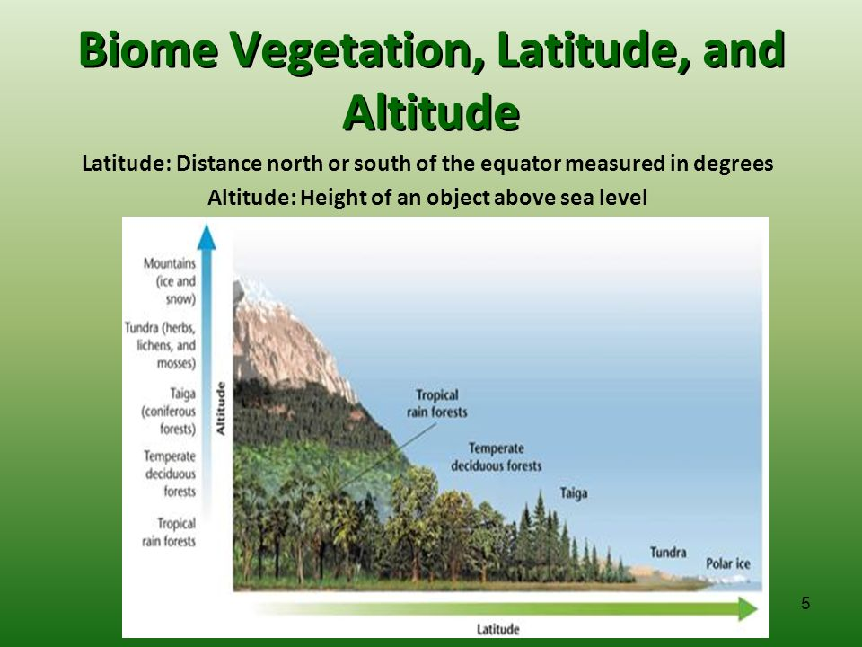 altitude and latitude relationship