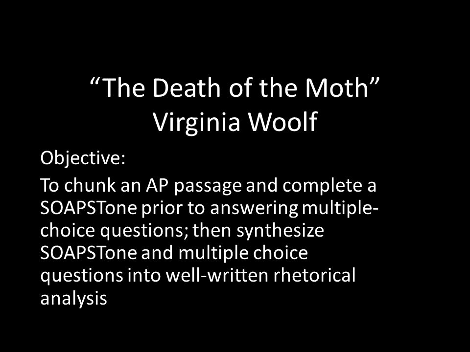 death of a moth completed essay