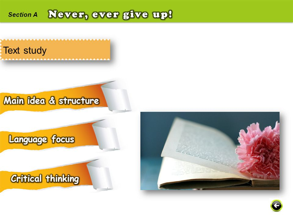 Never, ever give up! Text study Main idea & structure Language focus