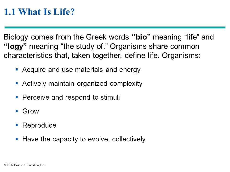 """1 1 What Is Life? Biology comes from the Greek words """"bio"""" meaning """"life""""  and """"logy"""" meaning """"the study of """" Organisms share common characteristics  that,"""
