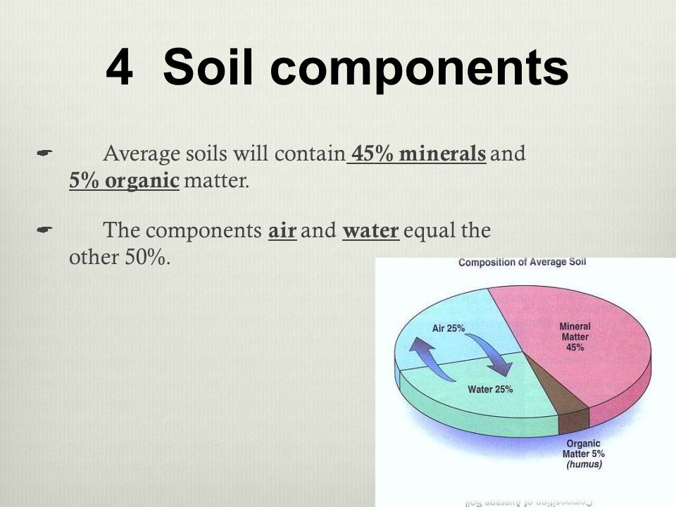 Plant and soil science standard 4 objective 2 ppt download for Four main components of soil