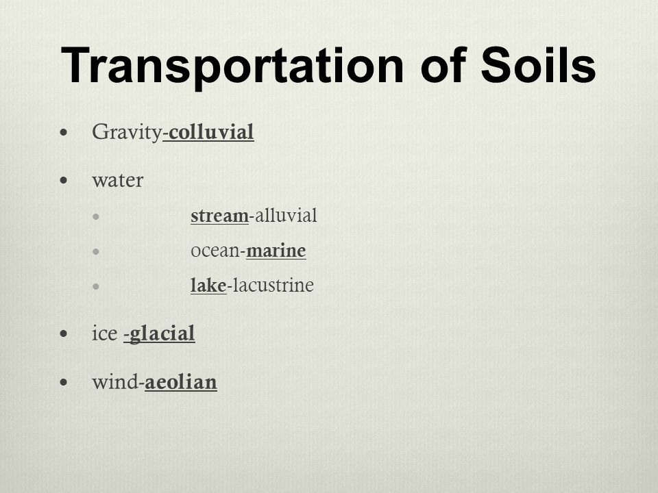 marine and lacustrine soil types Noaa classifies wetlands into five general types: marine (ocean), estuarine (estuary), riverine (river), lacustrine (lake), and  what is a wetland.