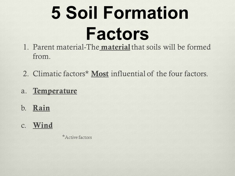 Plant and soil science standard 4 objective 2 ppt download for Soil forming factors
