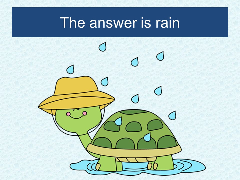 The answer is rain