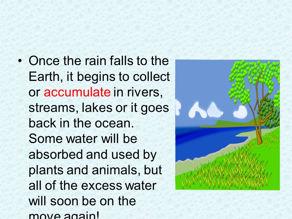 Once the rain falls to the Earth, it begins to collect or accumulate in rivers, streams, lakes or it goes back in the ocean.