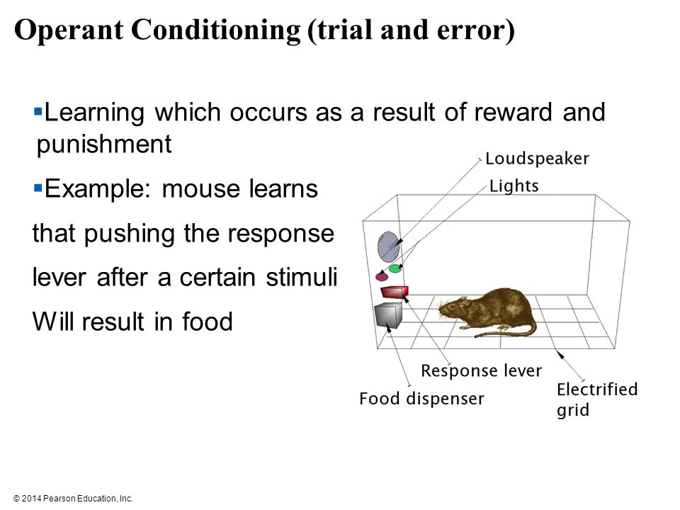 trial and error learning in humans Trial and error has a number of features: solution-oriented: trial and error makes no attempt to discover why a solution works, merely that it is a solution problem-specific: trial and error makes no attempt to generalize a solution to other problems.
