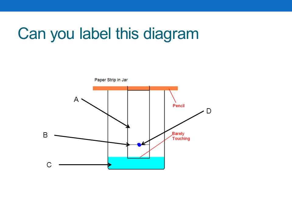 label this diagram | Diarra