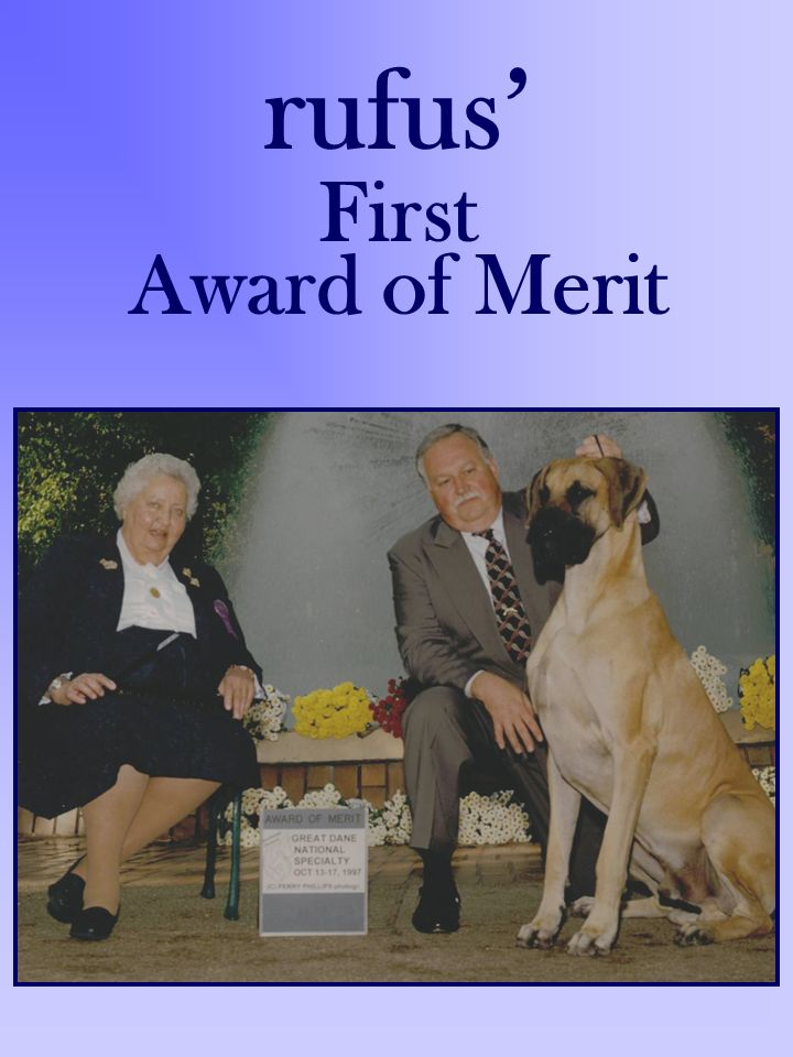 rufus' First Award of Merit