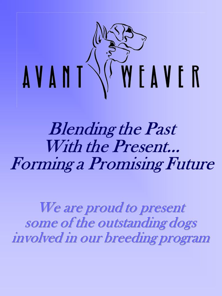 Blending the Past With the Present… Forming a Promising Future