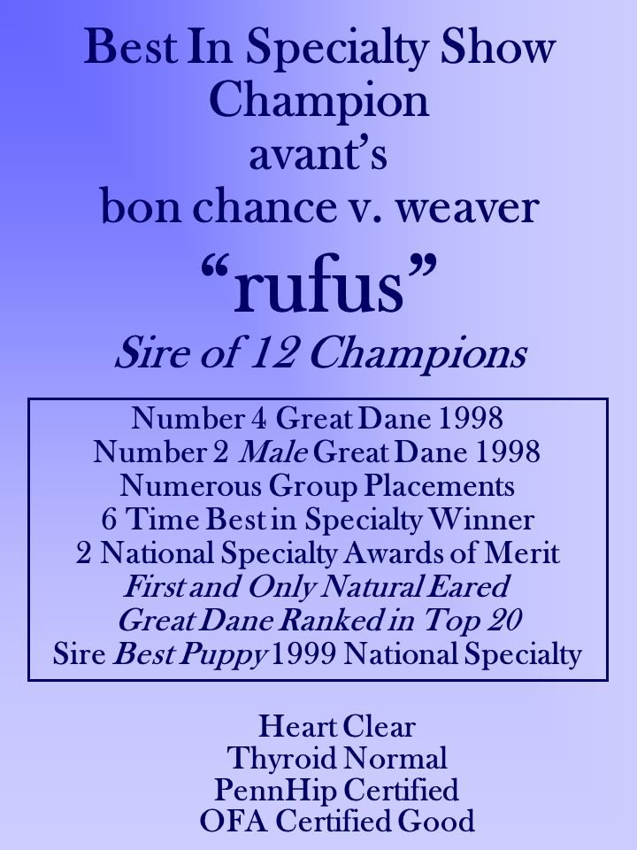 rufus Best In Specialty Show Champion avant's bon chance v. weaver