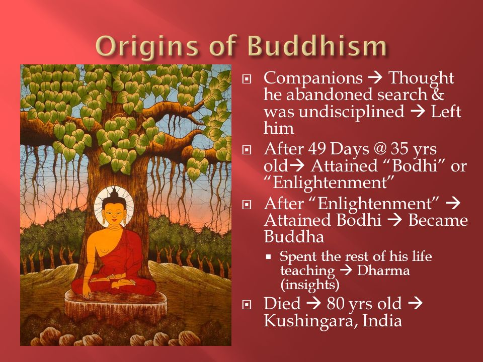 Origins of Buddhism Companions  Thought he abandoned search & was undisciplined  Left him.