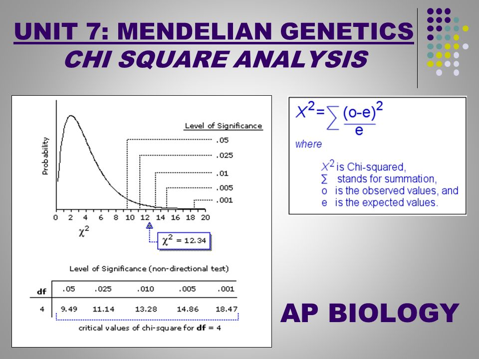 Corn Genetics and Chi Square Analysis - The Biology Corner