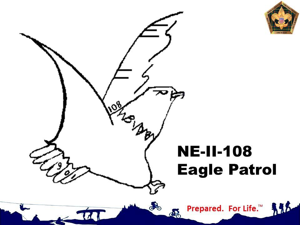 NE-II-108 Eagle Patrol Before we get going let me explain my totem.