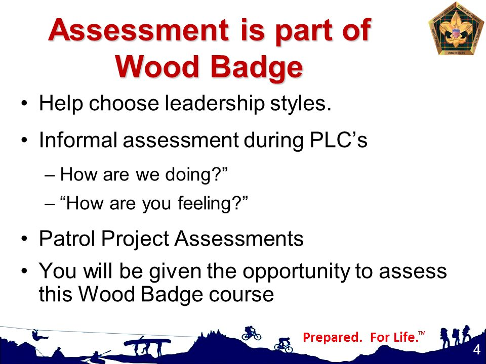 Assessment is part of Wood Badge