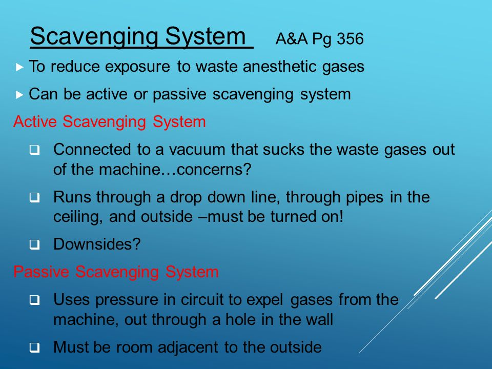 Part 3 Breathing Circuit Ppt Video Online Download