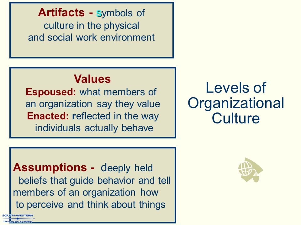 what does levels of organization mean