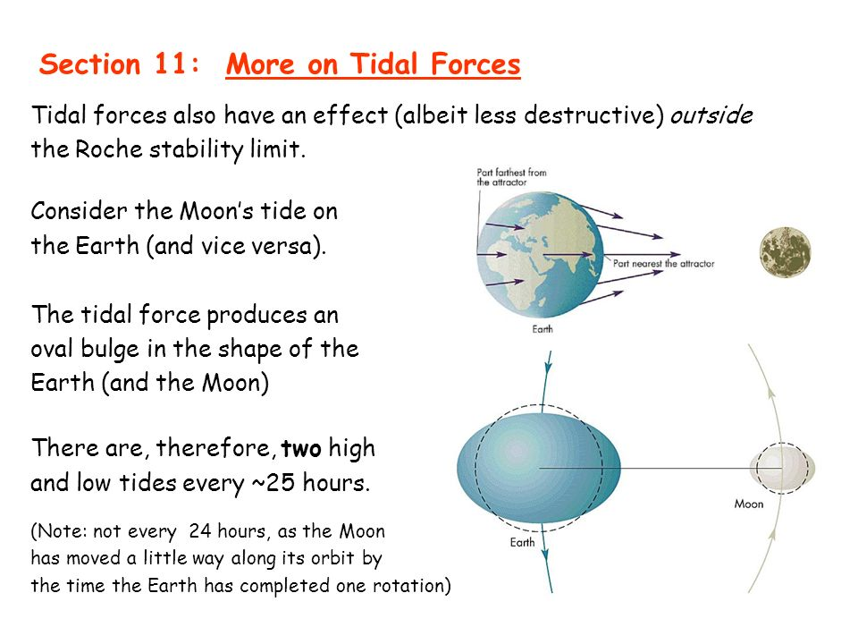 Section 11 more on tidal forces ppt download section 11 more on tidal forces ccuart Gallery