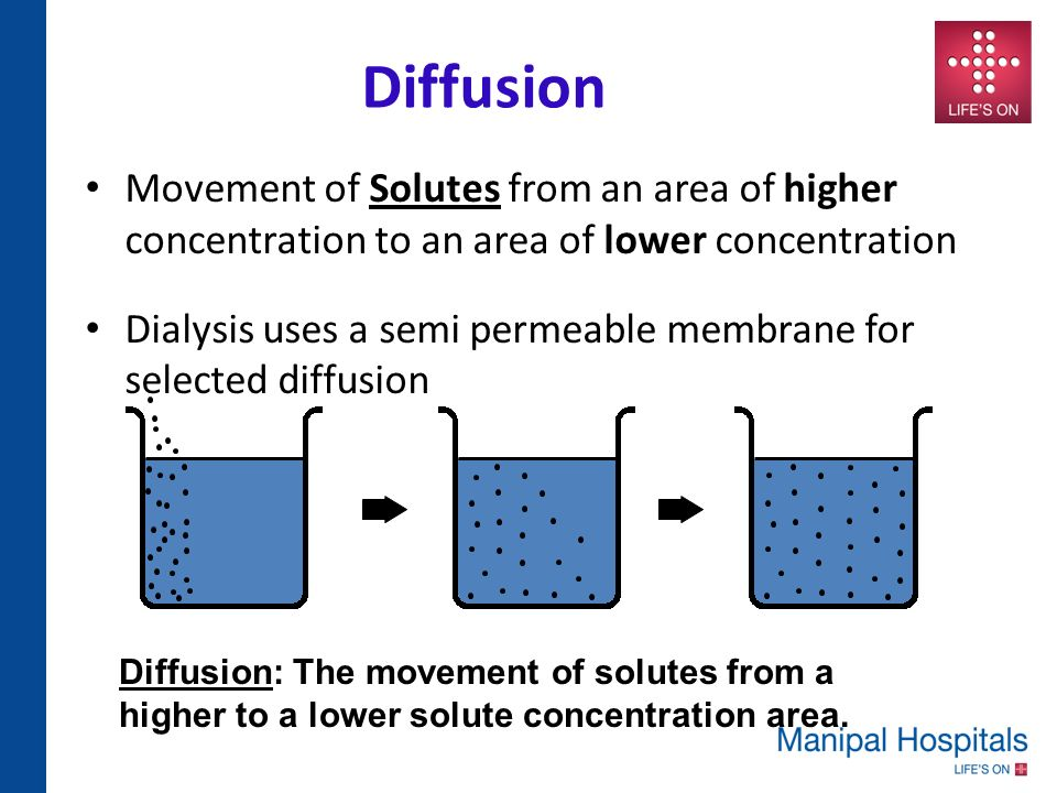 understanding the movement of fluids through diffusion Diffusion is a spontaneous movement of particles from an area of high concentration to an area of low  osmosis: the diffusion of water through a cell membrane.