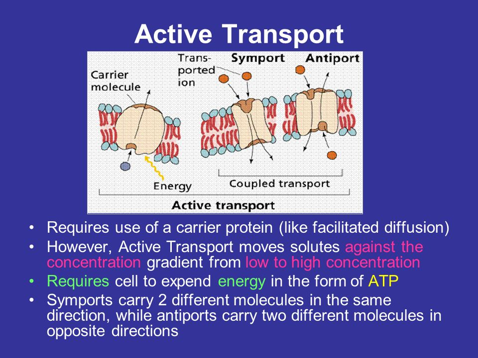 Active Transport Requires use of a carrier protein (like facilitated diffusion)