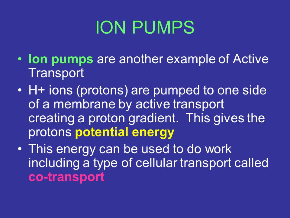 ION PUMPS Ion pumps are another example of Active Transport
