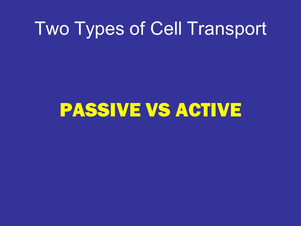 Two Types of Cell Transport