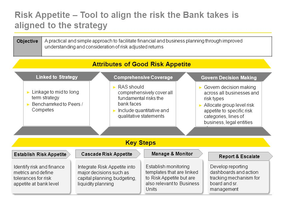 Advances in risk management beyond basel ii ppt video for Risk appetite template