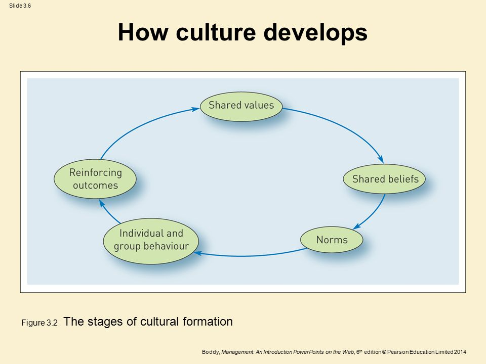 How culture develops Figure 3.2 The stages of cultural formation