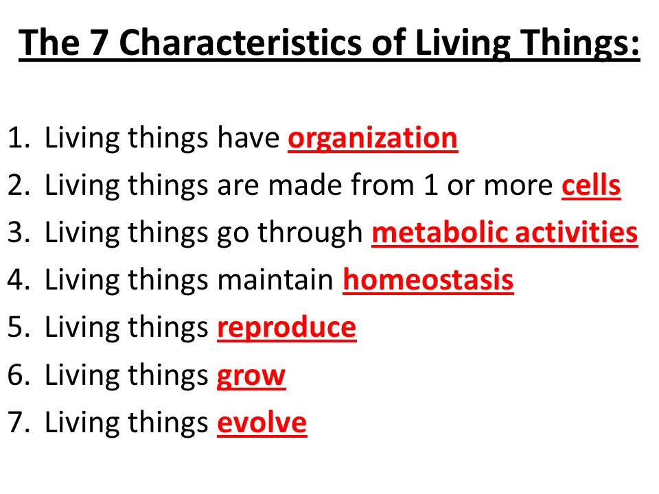 7 characteristics of life As part of our search for life beyond the earth, we try to understand how  of life  does not yet exist, there are some necessary characteristics of.
