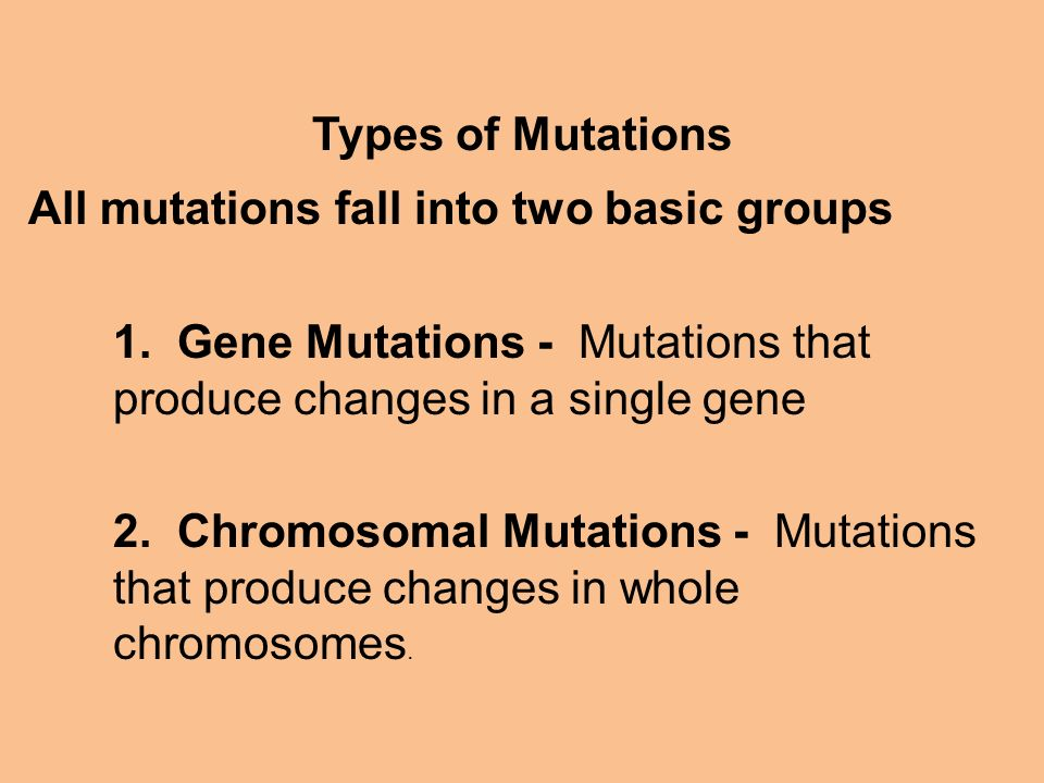 Types of Mutations All mutations fall into two basic groups. 1. Gene Mutations - Mutations that produce changes in a single gene.