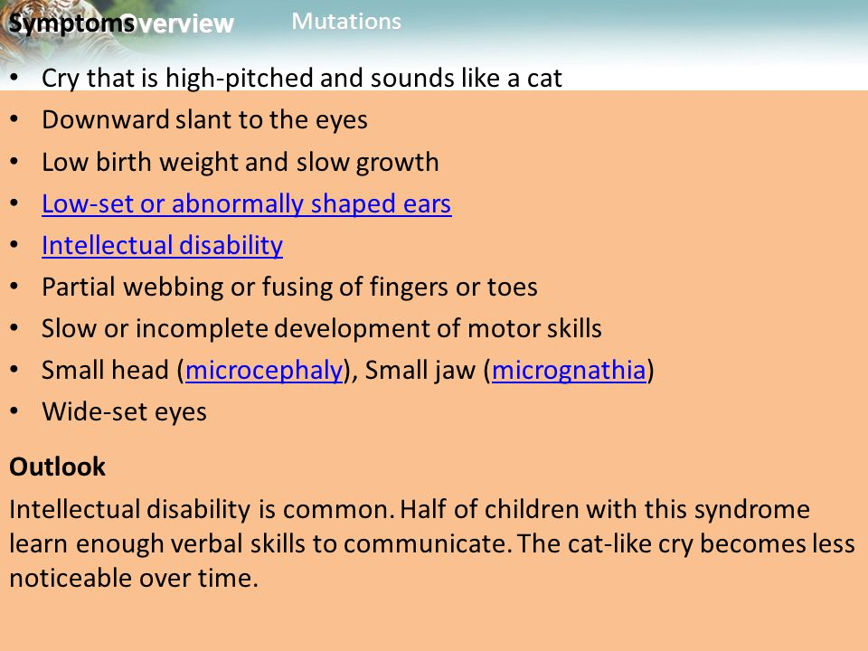 Symptoms Cry that is high-pitched and sounds like a cat. Downward slant to the eyes. Low birth weight and slow growth.