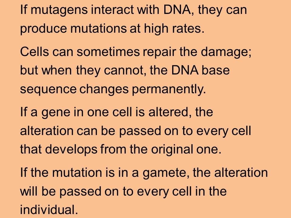 If mutagens interact with DNA, they can