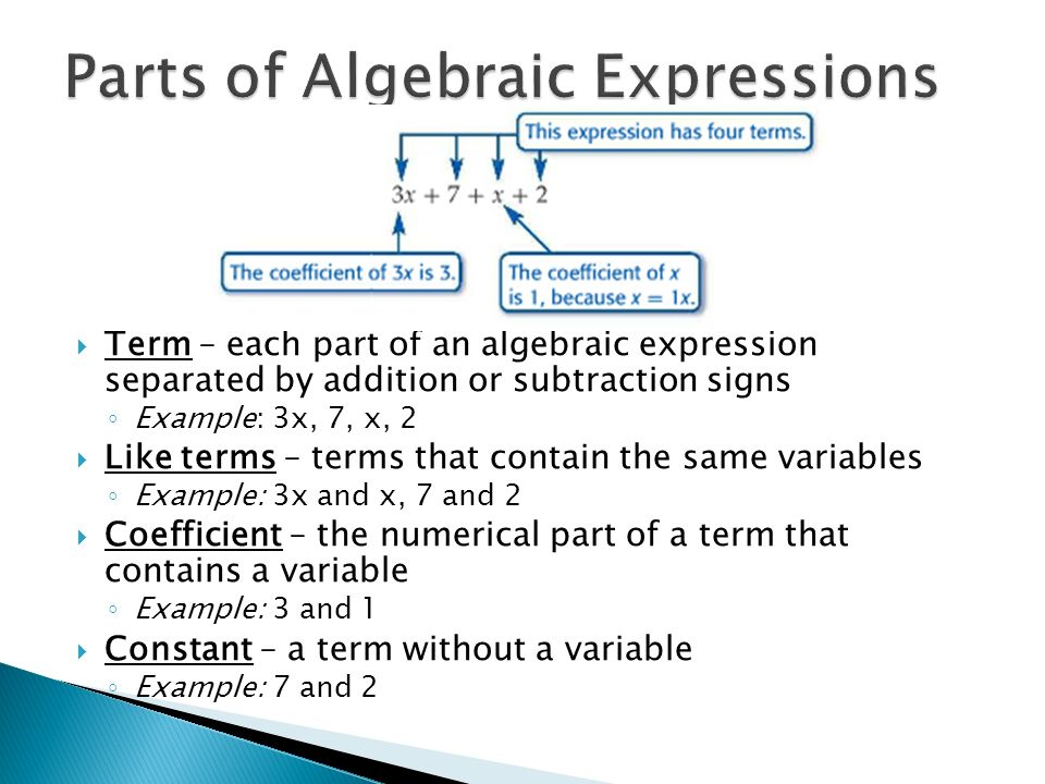 Algebraic Expressions - ppt video online download