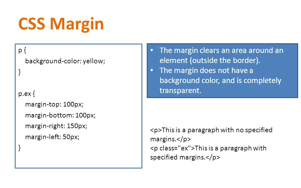how to add color to margin in css