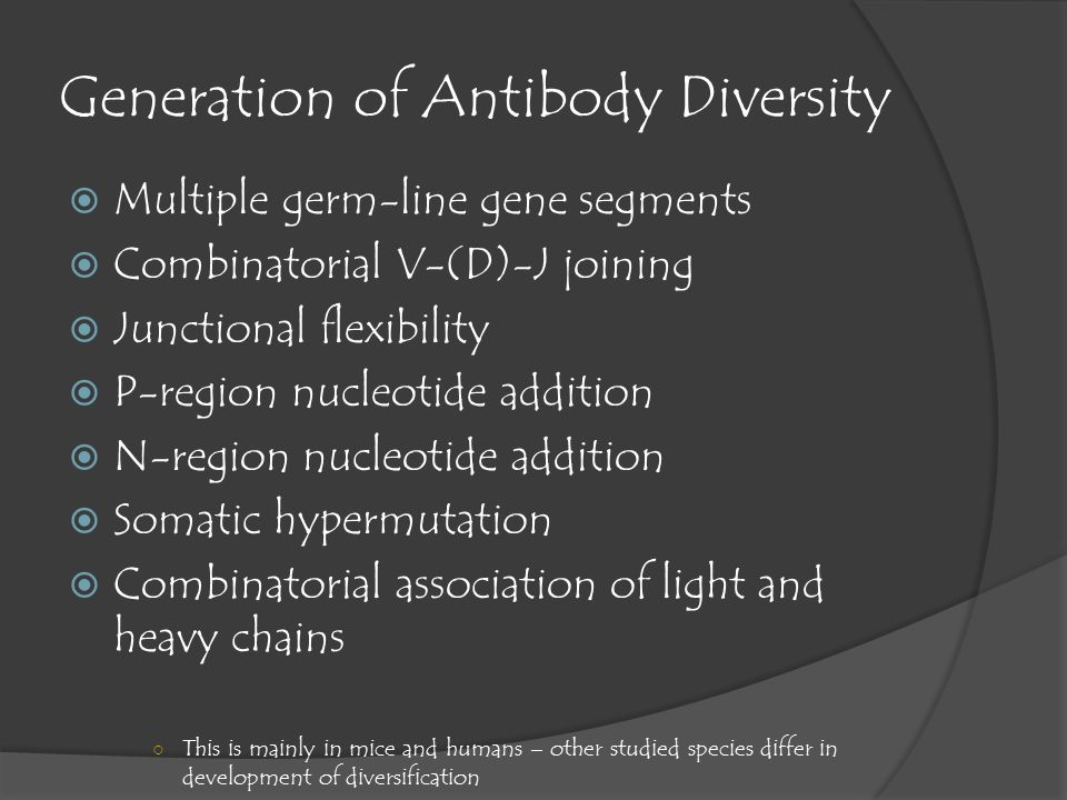 generation of antibody diversity Generation of this repertoire diversity is accomplished primarily through two  mechanisms: recombination and somatic hypermutation (shm.