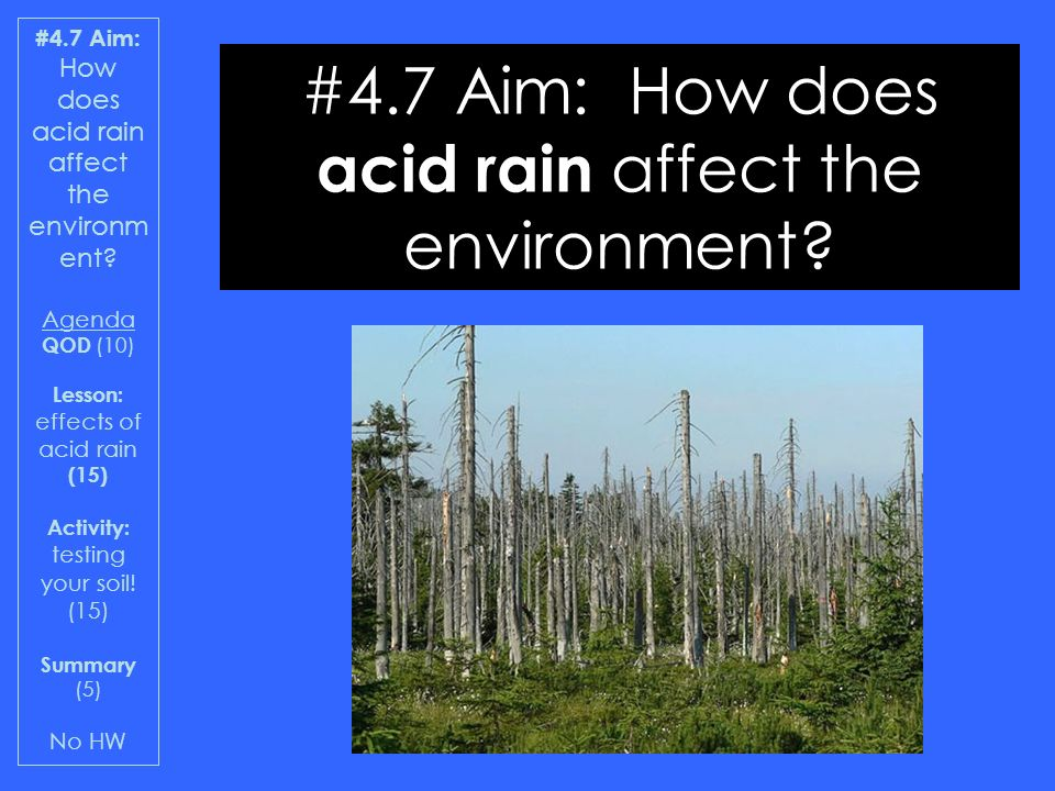 the devastating effects of acid rain to the environment Other acid rain essays effects of acid rain on an ecosystem acid rain acid rain is devastating to the ecosystem and is one of the most pressing.