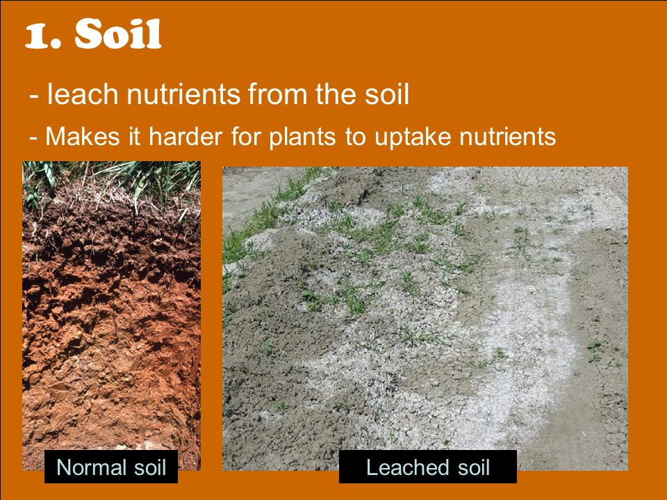 Effects of acid rain qod have your bag of soil water on for What does soil come from