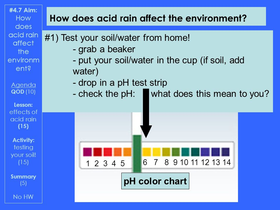 Effects of acid rain qod have your bag of soil water on for What do you mean by soil