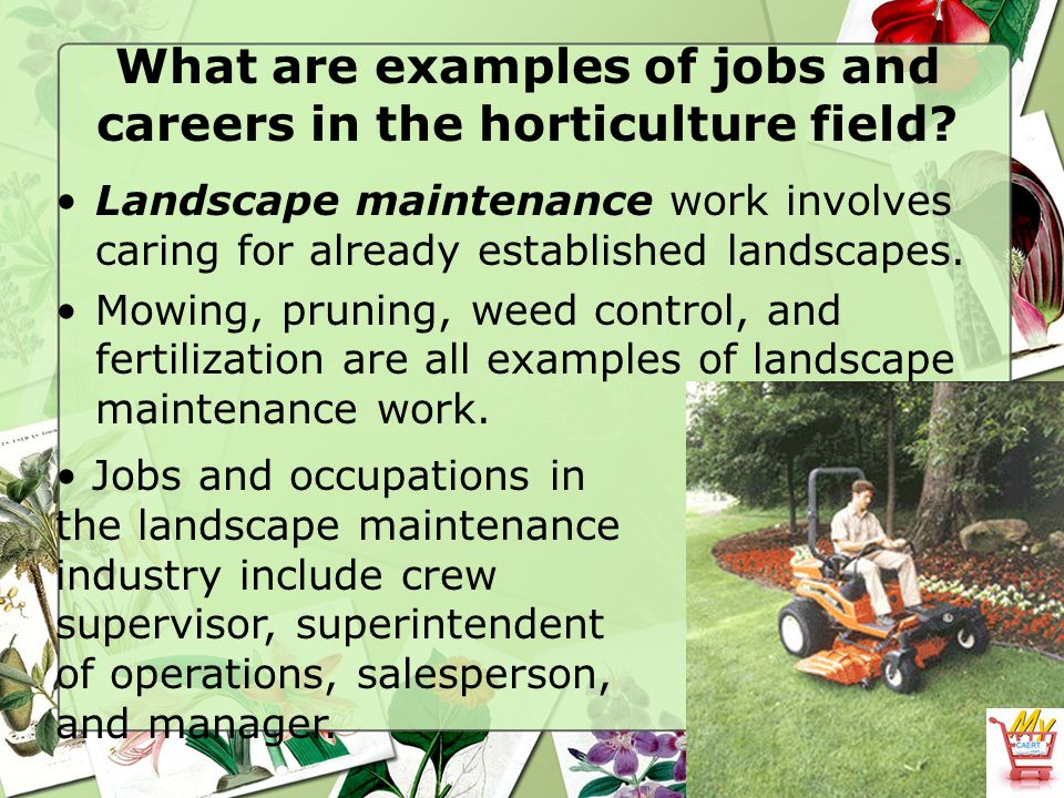 The horticulture industry ppt video online download for Garden maintenance jobs