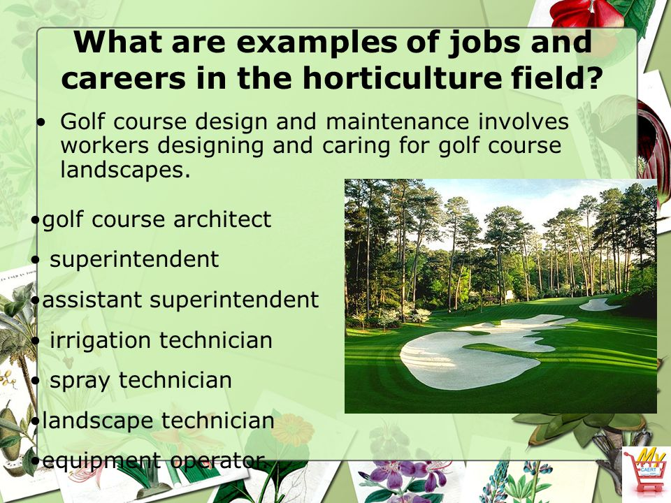 The Horticulture Industry - Ppt Video Online Download