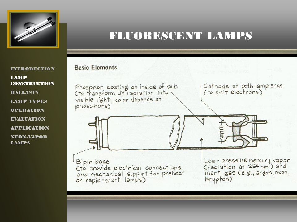 light fluorescent explosion division proof with class lamp lamps