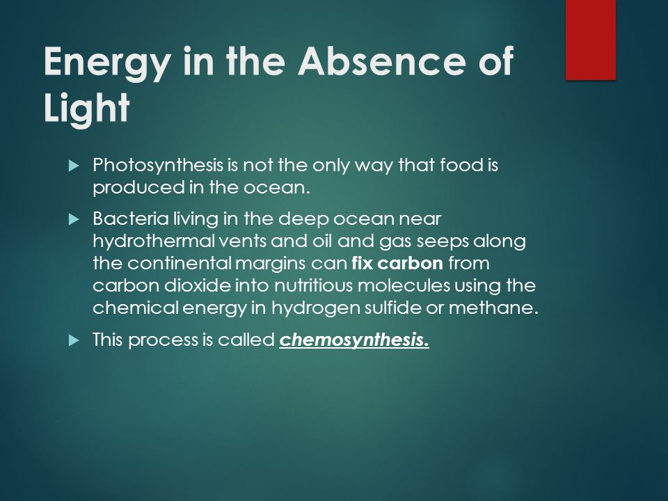 how is food produced in the process of chemosynthesis Photosynthesis vs chemosynthesis organisms on the earth¹s surface depend on plants to produce surface from sunlight  a process called for food production.