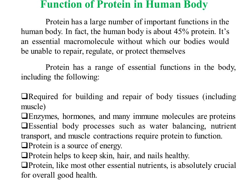 the importance enzymes in the human body Within the human body, enzymes can be found in bodily fluids, such as blood, saliva, the gastric juices or the stomach and fluids in the intestines in general, enzymes serve as catalysts for biological functions, including natural,.