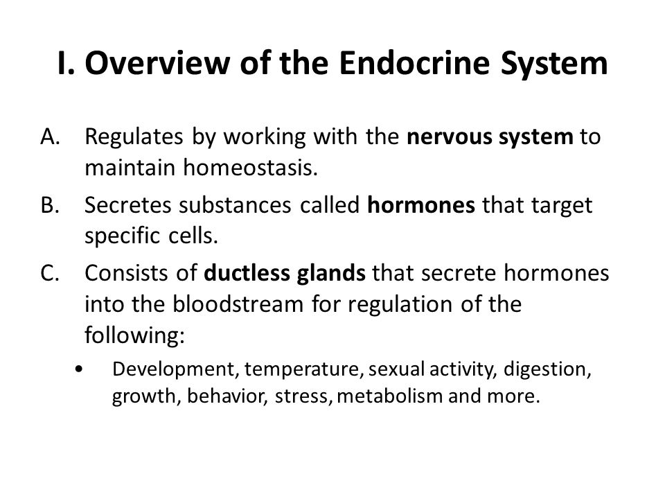 I. Overview of the Endocrine System