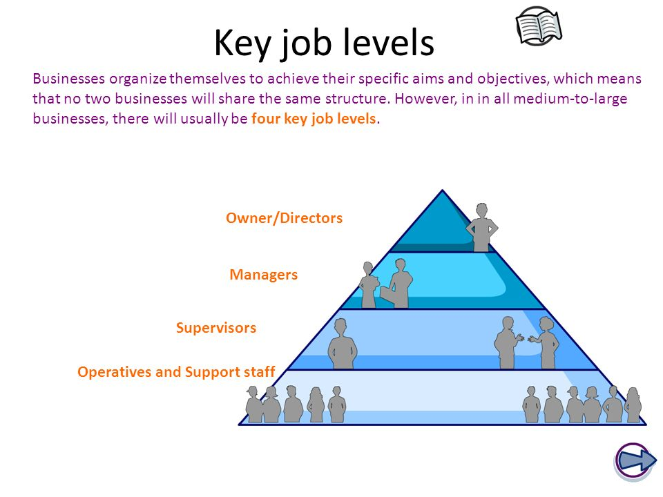 p1 p2 job roles and their functions P2 describe the main employability, personal and communication skills required when applying for a specific job role in a selected organisation.