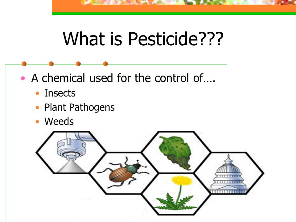 types of pesticides used in agriculture pdf