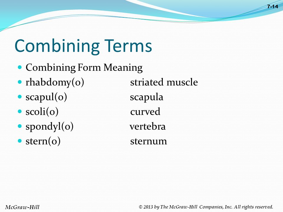 Medical Terminology: A Programmed Approach Paula Bostwick and ...
