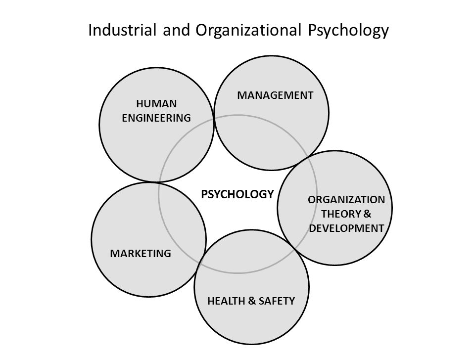 analyzing oranizational psychlogy Organizational behavior management is when the scientific principles of behavior analysis are applied to performance evaluation and improvement in any organizational context obm is used widely in healthcare, sports, and manufacturing, and is increasingly being taken into consideration in all types of human resource management systems.