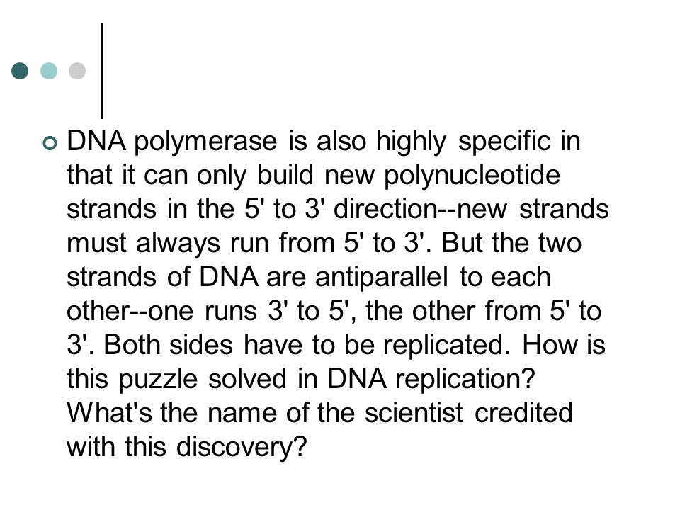 Dna Polymerase Can Only Build Dna In Which Direction